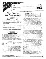 d688dccc8 photosynthesis - PDF Free Download