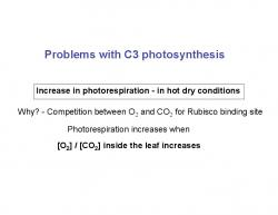 photosynthesis - PDF Free Download 55092686eff6f